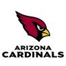Arizona Cardinals to be the 2018 Super Bowl winning team